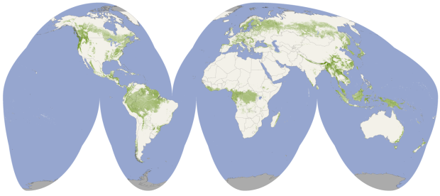 Global forest heights mapped by NASA