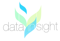 Data insight