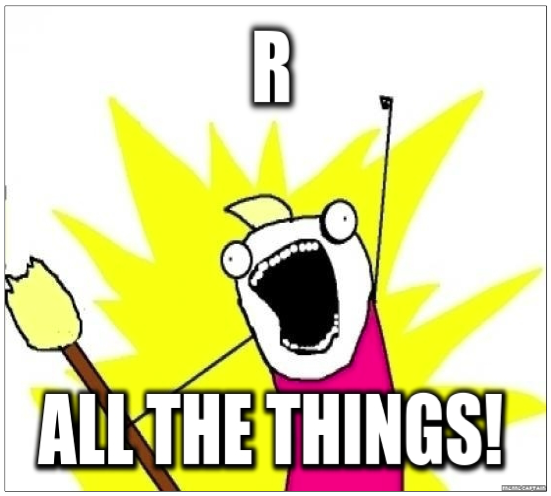 R all the things